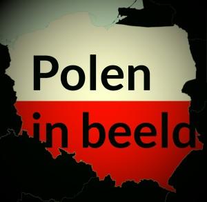 poleninbeeldvintage