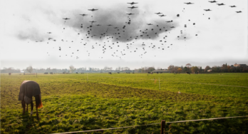 Wandelroute: De Polen van Driel